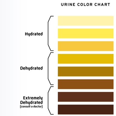 nutrition_guide_hydration_urine_color_chart
